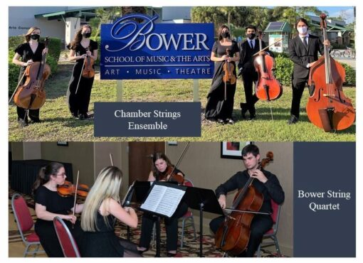 Composite String Quartet and Chamber Strings